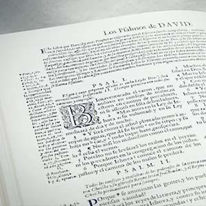 Spanish Bible